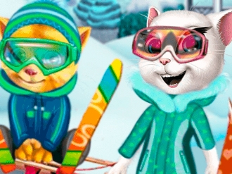 Cats Winter Fun